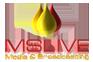 Live Streaming Server provider | Live streaming service provider - MSLIVE